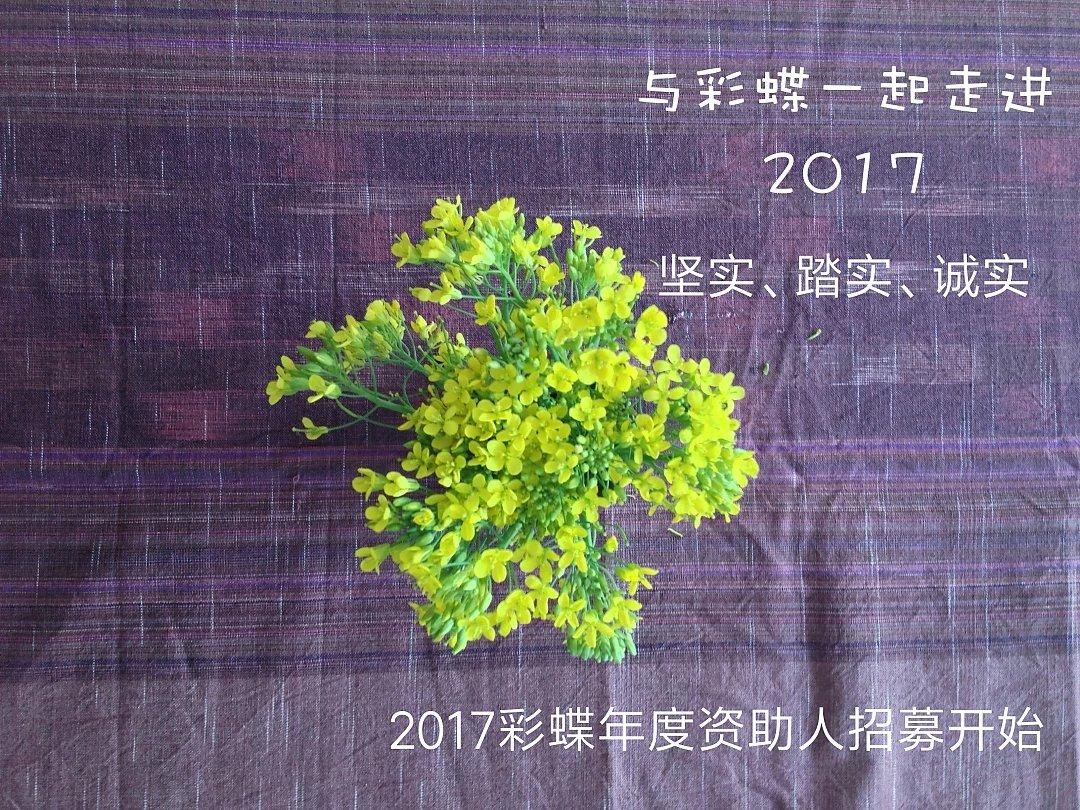 【发布】2017彩蝶年度资助人招募启动